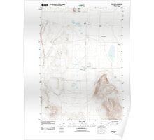 USGS Topo Map Oregon Fort Rock 20110819 TM Poster