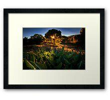 Gleam Framed Print