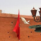 Flight to the Flag by Pippa Carvell