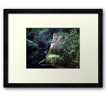 A Touch Of Smoke Framed Print