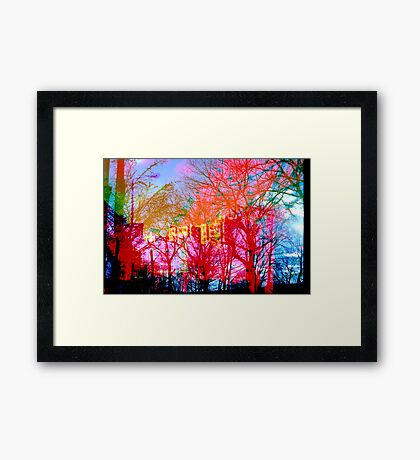 Vibrant Tree Life Framed Print