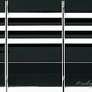 White Horizontal Lines by Michele Filoscia