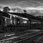 37109 at Cheddleton by David J Knight