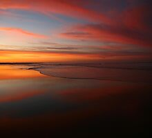 the beach. gippsland coast, vistoria, australia by tim buckley | bodhiimages