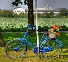 Blue Bicycle 1, Meerbusch, Germany, by David A. L. Davies