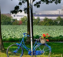 Blue Bicycle 2, Meerbusch, Germany, by David A. L. Davies
