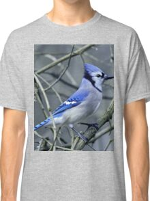Blue Jay in the Brush Classic T-Shirt