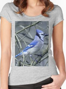 Blue Jay in the Brush Women's Fitted Scoop T-Shirt
