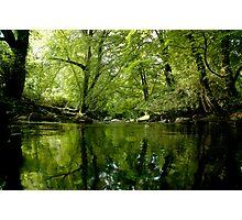 Green Devon Photographic Print