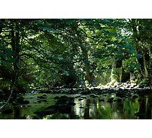 Devon River Photographic Print