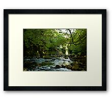 River in Devon Framed Print