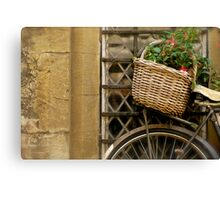 country basket Canvas Print
