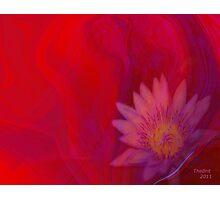 feminine touch Photographic Print