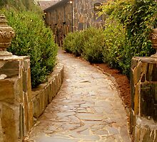 Stoned Pathway  ^ by ctheworld
