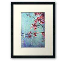 Hope for Spring -revisited Framed Print