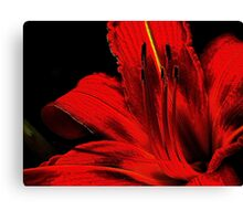 Red ! Canvas Print
