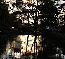 Dusk over Cheddar ponds by TimLarge