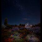Uluru camp ground by ArtX