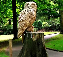 Owl Statue by shelleybabe2