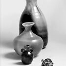Vases and the Turtle - Series by glennc70000