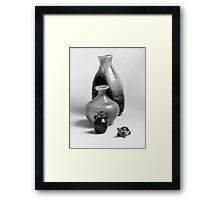 Vases and the Turtle - Series Framed Print