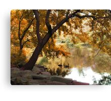 Riverbank Reflections Canvas Print