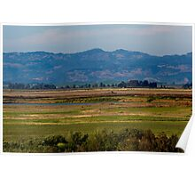 Sonoma Valley Poster