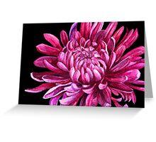 """Chrysanthemum """"the opening"""" Greeting Card"""