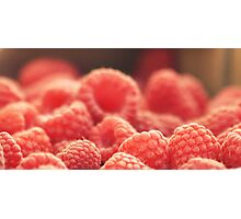 Farm Fresh Photographic Print