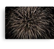 Canada Day 2015 Canvas Print