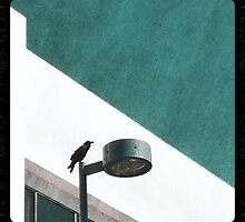 CAW by Kevin Bergen