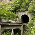 Ohau Stream, Rail Bridge and Tunnel by Belinda Osgood