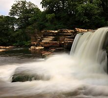 Richmond Falls by Harry Purves
