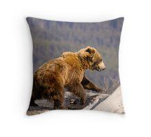 On The Run - Alaska  Throw Pillow
