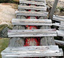 chinese ladder by Deniyoyo