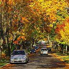 Autumn Street by Michael Lucas