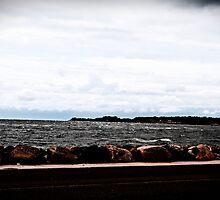Shoreline, the Sea. by tutulele