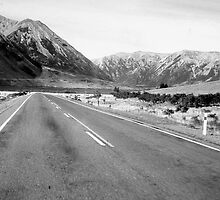 Road - New Zealand by Carolina Couto