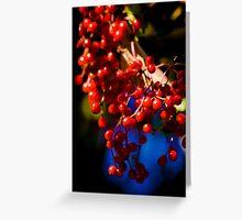 Festive Berries Greeting Card