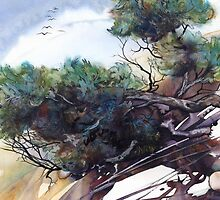 Twisted Trees by Helen Lush