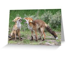 Mother and child red fox  Greeting Card