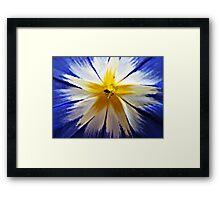 Just a little flower. Framed Print