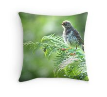 Fledgling Meadow Pipit. Throw Pillow