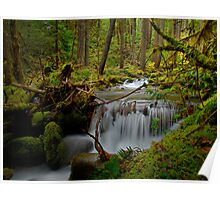 A Touch Of Heaven ~ Oregon Cascades ~ Poster