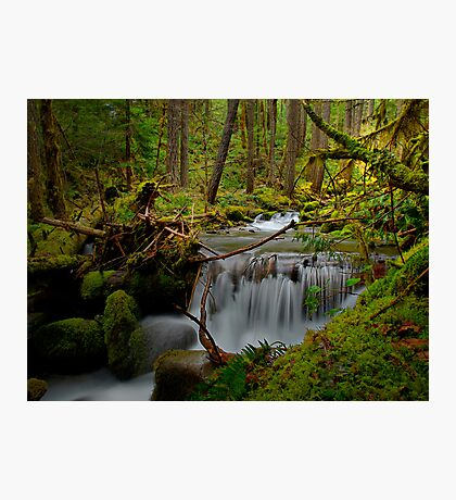 A Touch Of Heaven ~ Oregon Cascades ~ Photographic Print