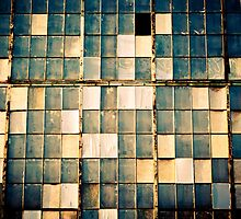 Factory Window Panes - Parkersburg, WV by cyasick