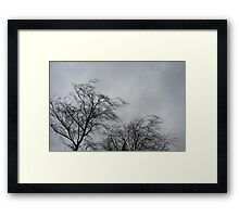 Trees Blowing In The Wind Framed Print