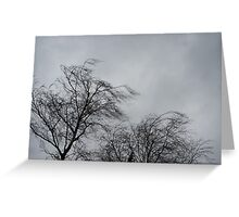 Trees Blowing In The Wind Greeting Card