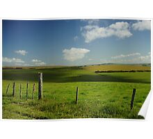 Fence And Cattle Poster
