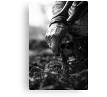 Trophy Canvas Print
